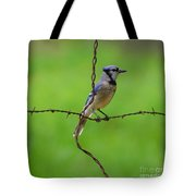 Blue Jay On Crossed Wire Tote Bag