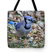 Blue Jay With A Piece Of Corn In Its Mouth Tote Bag