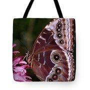 Blue Morpho Butterfly On Flower Tote Bag