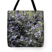 Blue Over Grey Tote Bag