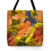 Blue Ridge Autumn Leaves 1.0 Tote Bag