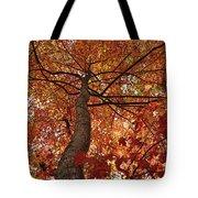Blue Ridge Autumn Leaves 1.3 Tote Bag