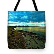 Blue Shores Tote Bag