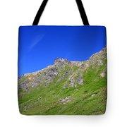 Blue Sky's Tote Bag