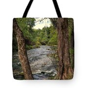 Blue Spring Branch Tote Bag