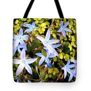 Blue Star Flowers Tote Bag