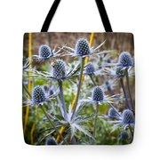 Blue Stem Sea Holly Tote Bag