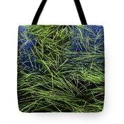 Blue Water Green Grass Glacier National Park Tote Bag
