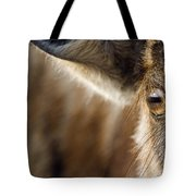 Blue Wildebeest Connochaetes Taurinus Tote Bag