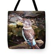 Blue-winged Kookaburra 2 Tote Bag