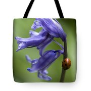 Bluebell And Ladybird Tote Bag