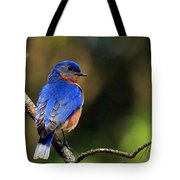 Bluebird 4 Tote Bag