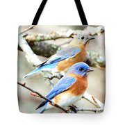 Bluebird Couple Tote Bag