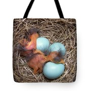Bluebird Hatch Tote Bag