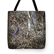 Bluebird In Barberries Squared Tote Bag
