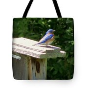 Bluebirds Make Me Happy Tote Bag