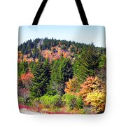 Blueridge Parkway View Near Mm 423 Tote Bag