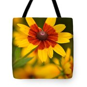 Blush-eyed Susan Tote Bag