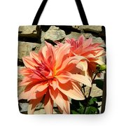 Blushing Peach Dahlias Tote Bag