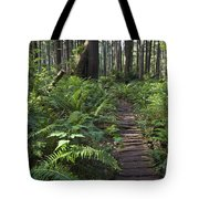 Boardwalk Winds Through The Forest Tote Bag