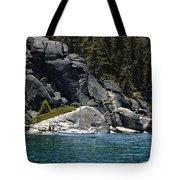Boat A Rockin Tote Bag