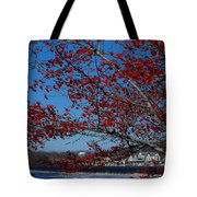 Boat House Row Peeking Through Tote Bag by Lisa Phillips