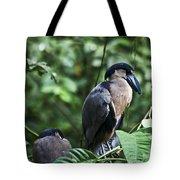 Boatbill Tote Bag