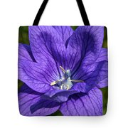 Bodacious Balloon Flower Tote Bag