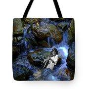 Bolin Creek Tote Bag