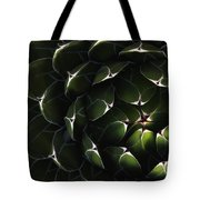 Bolivian Plant In Late Afternoon Light Tote Bag