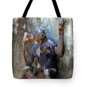 Bonobo 1 Tote Bag