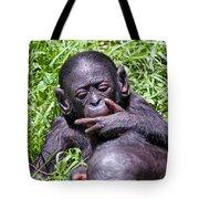 Bonobo 2 Tote Bag