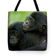 Bonobo Orphans Hugging Tote Bag