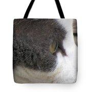 Boojer's Eye Tote Bag