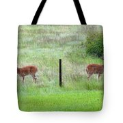 Bookend Twin Bucks Tote Bag