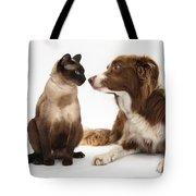 Border Collie & Siamese Cat Tote Bag