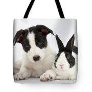 Border Collie Pup And Dutch Rabbit Tote Bag
