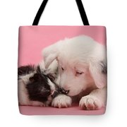 Border Collie Pup And Guinea Pig Tote Bag