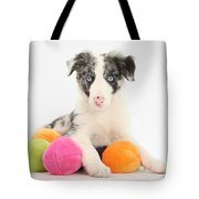 Border Collie Pup Tote Bag