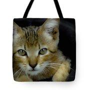 Born Wild Tote Bag
