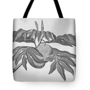 Botany: Breadfruit Tree Tote Bag