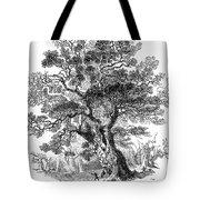 Botany: Oak Tree Tote Bag
