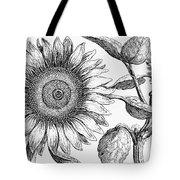 Botany: Sunflower Tote Bag