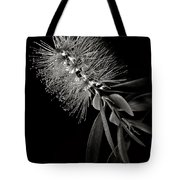 Bottlebrush In Black And White Tote Bag