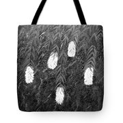 Bottlebrush Plant B W Tote Bag