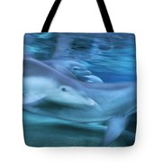 Bottlenose Dolphins Swimming Hawaii Tote Bag