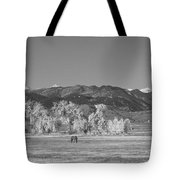Boulder County Colorado Front Range Panorama With Horses Bw Tote Bag