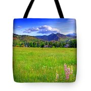 Boulder Park View Tote Bag