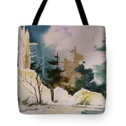 Boundary Waters Tote Bag