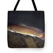 Bowfin Amia Calva Swims The Murky Tote Bag